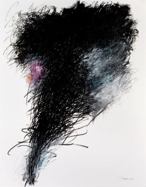 Schwarze Lilien 1 | ÖP und Bleistift auf Papier | 85 x 70 cm, gerahmt | 21.7.2005